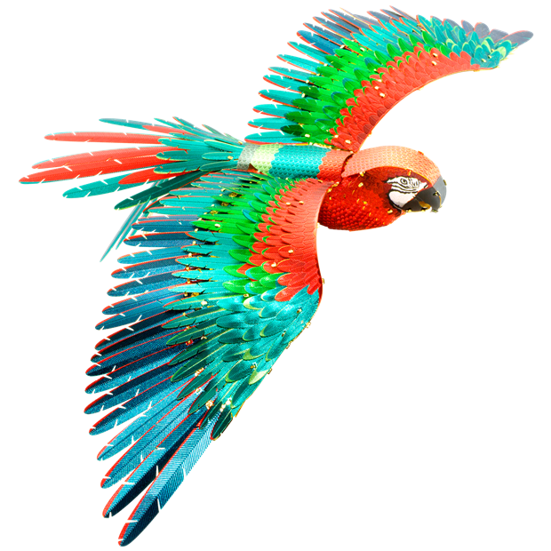 Picture of Premium Series Parrot