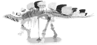 Picture of Stegosaurus Skeleton