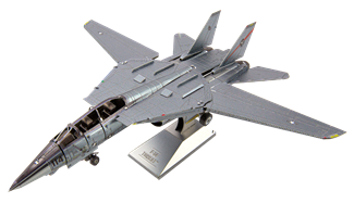 Picture of F-14 Tomcat™