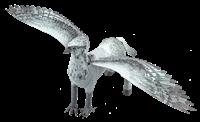 Picture of Buckbeak